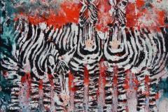 Spotty Zebras.30x30cm