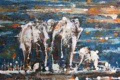 elephantsinthesunset20x20cm