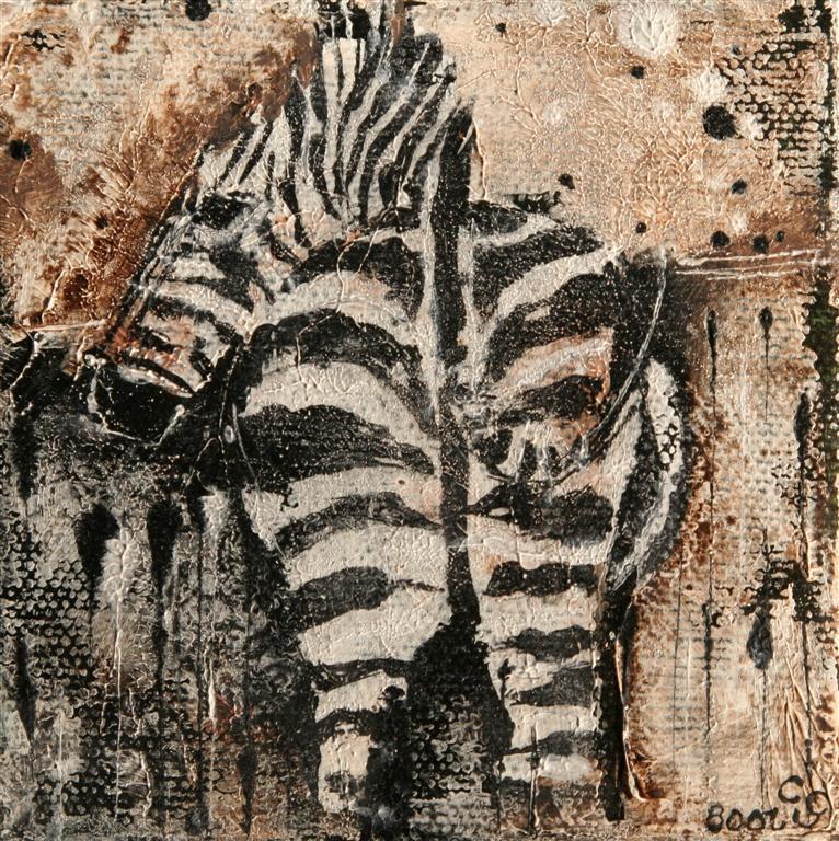 zebra10x10cm