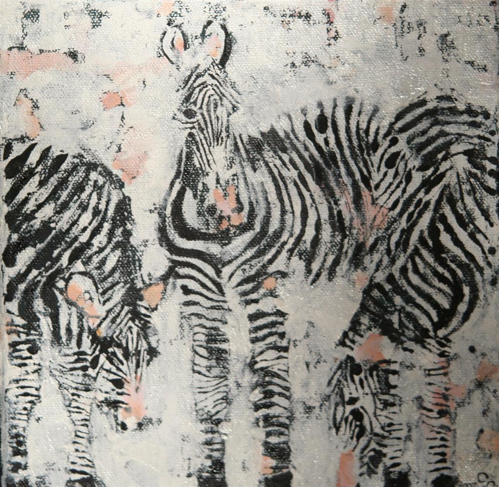 zebras20x20cm_